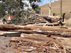 Acidente na rodovia MGC - 482  serra de Espera Feliz x Carangola deixa vítima fatal
