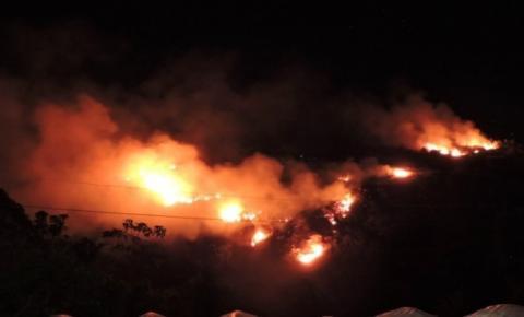 Incêndio atinge espécies da flora nativa na região do Caparaó