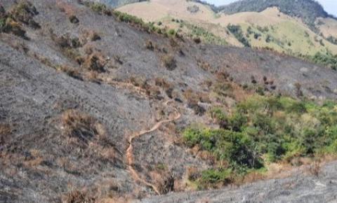 Símbolo da agroecologia no Caparaó é destruído em incêndio