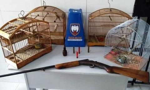 Armas de fogo e animais silvestres são apreendidos pela Polícia Militar ambiental no Caparaó