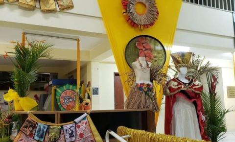 Exposição busca reviver a história do carnaval de Carangola
