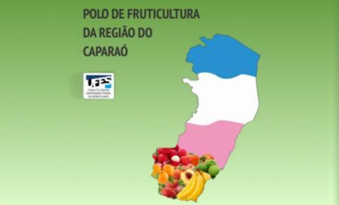 Projeto de implantação do Polo de Fruticultura na região do Caparaó será lançado nesta quinta