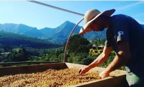 Capacitação para ampliar a qualidade do café em Espera Feliz