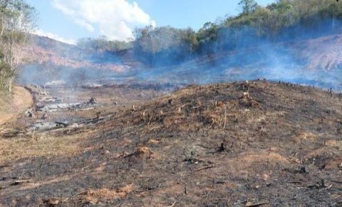 PM ambiental combate desmatamento na região; Mais de 150 mil em multa
