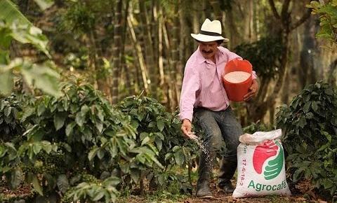 Preços de fertilizantes podem aumentar nesta safra