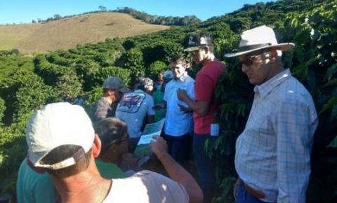 Tecnologia de poda do café é tema de encontro em Dores do Rio Preto